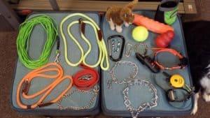 Dog Training Tools