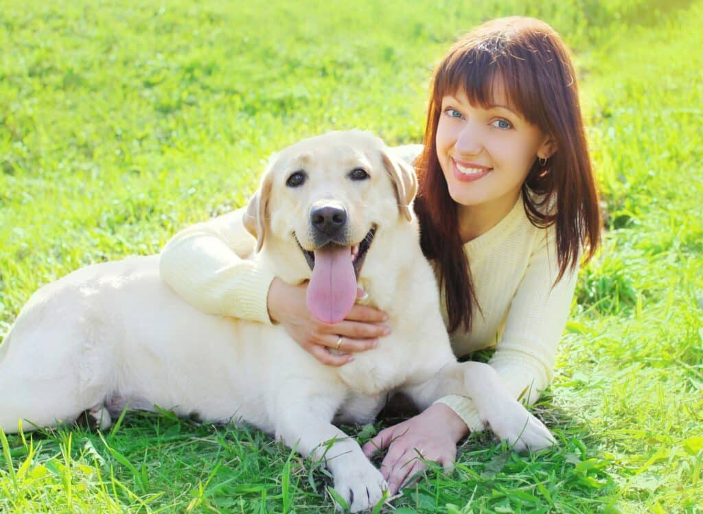 Private In Home Dog Training