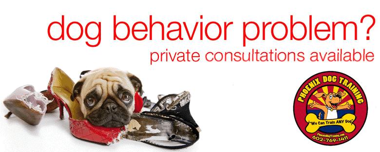 Dog Behaviorist Fountain Hills