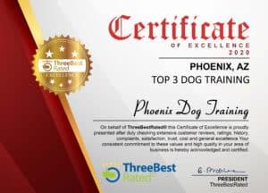 Dog_Training_Phoenix_Best_Scottsdale_Phoenix_Dog_Training_Company_Award_2020