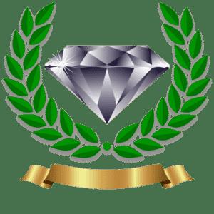 Dog Training Phoenix Diamond Package